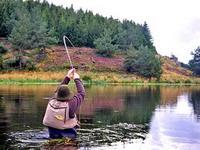 Pêche au streamer