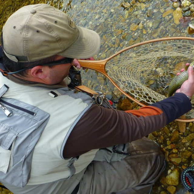 Ouverture de la Pêche en 1ère Catégorie